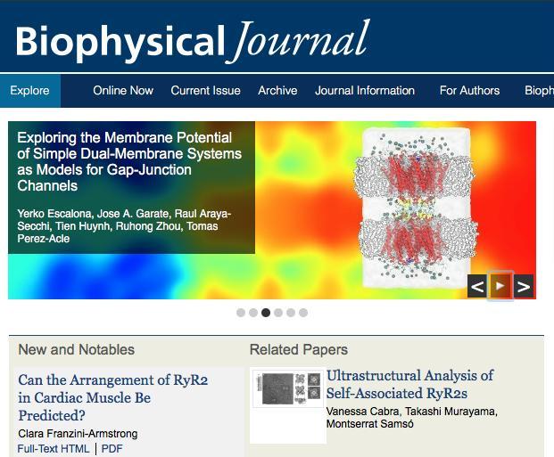 BiophysJournal